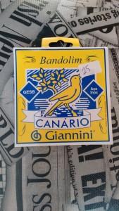 Corda Bandolim - Canário Gianinni R$ 25,00